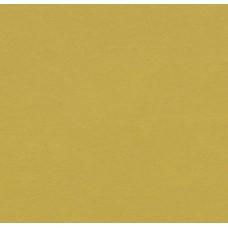 Натуральный линолеум Forbo (Eurocol) Marmoleum Modular t3362 yellow moss